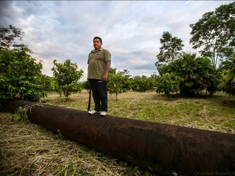 Servio Curipoma: Cacao Farmer from the Ecuadorian Amazon vs. Chevron